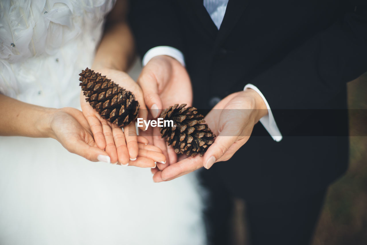 Close-Up Of Couple Holding Pine Cone