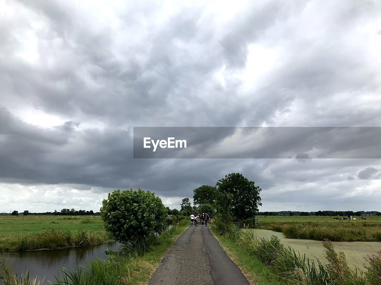 cloud - sky, sky, direction, the way forward, plant, diminishing perspective, road, transportation, tree, nature, beauty in nature, scenics - nature, day, field, overcast, growth, no people, tranquility, tranquil scene, outdoors, ominous