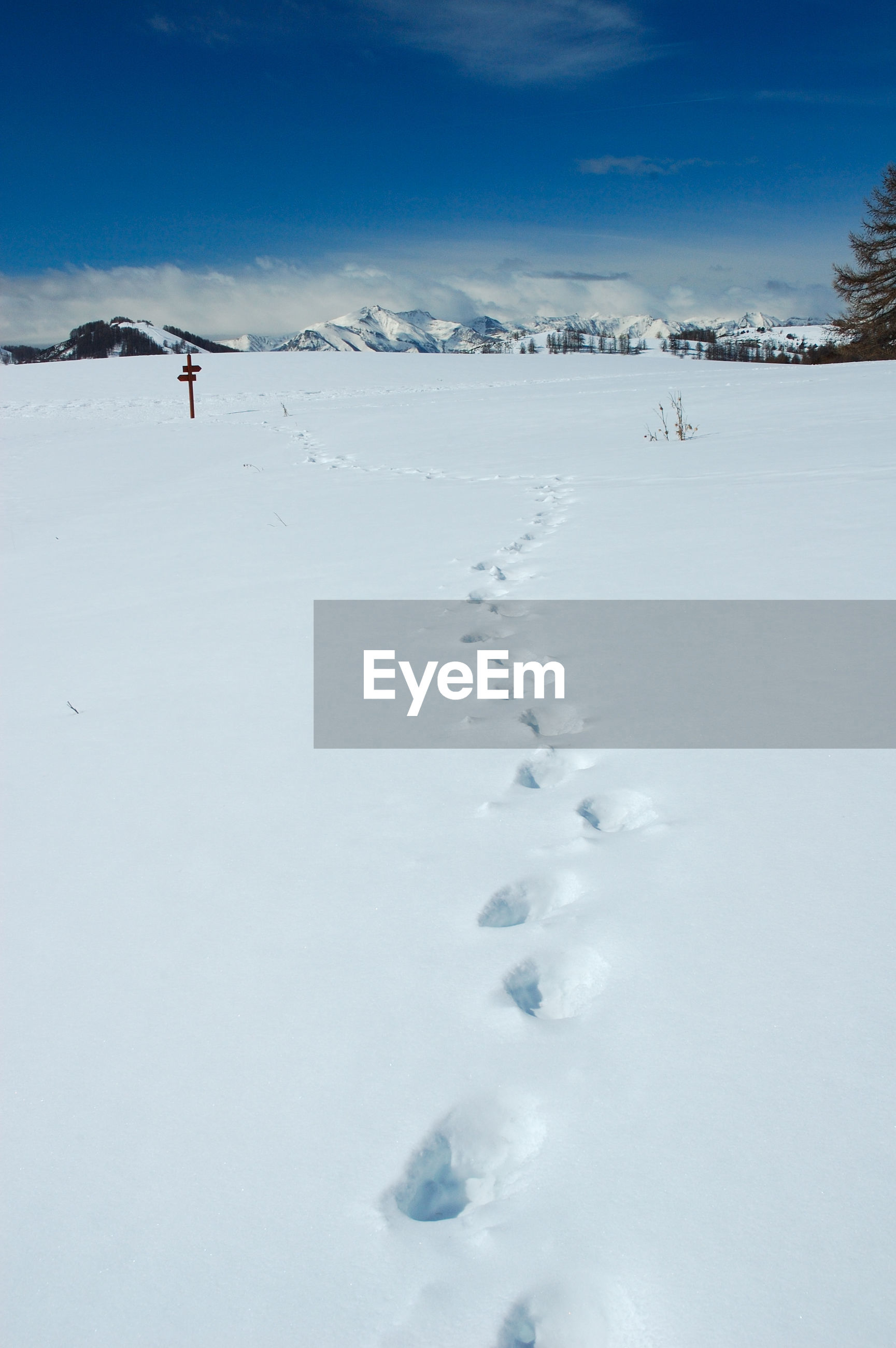 SCENIC VIEW OF SNOW COVERED FIELD AND MOUNTAINS