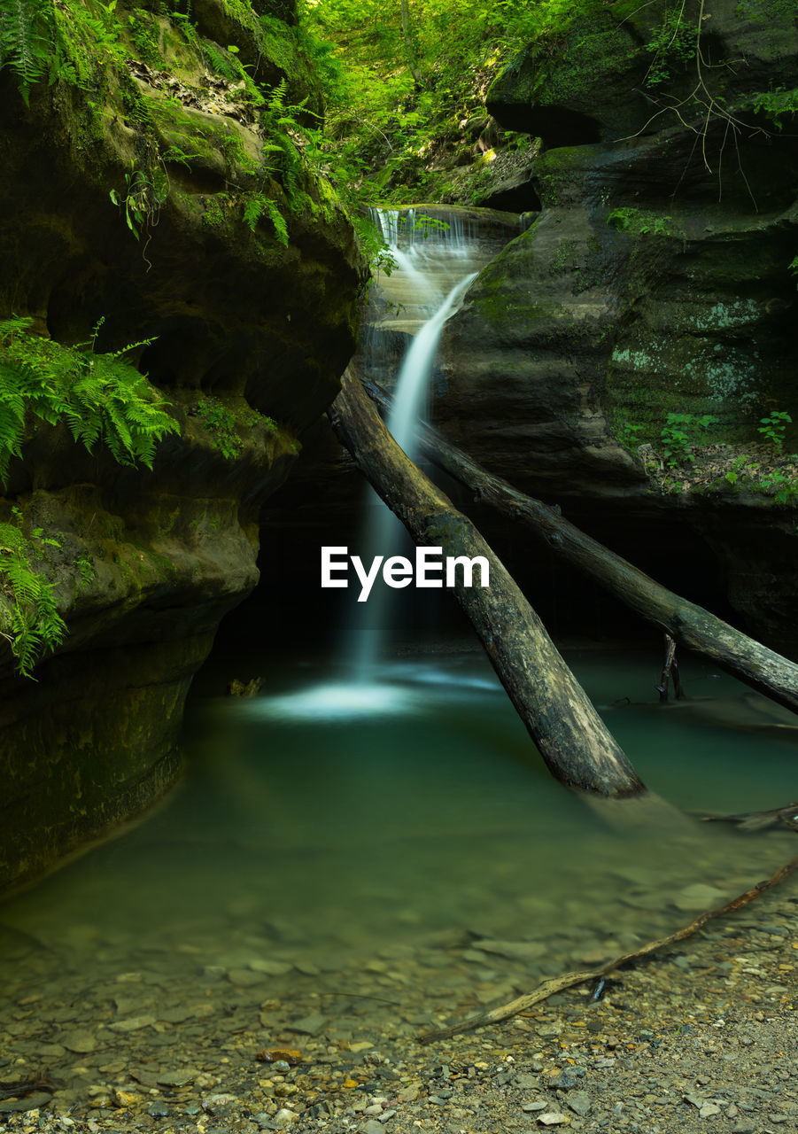 water, long exposure, tree, scenics - nature, waterfall, nature, no people, plant, beauty in nature, motion, tranquility, forest, flowing water, rock, day, land, solid, outdoors, rock - object, flowing, power in nature, rainforest