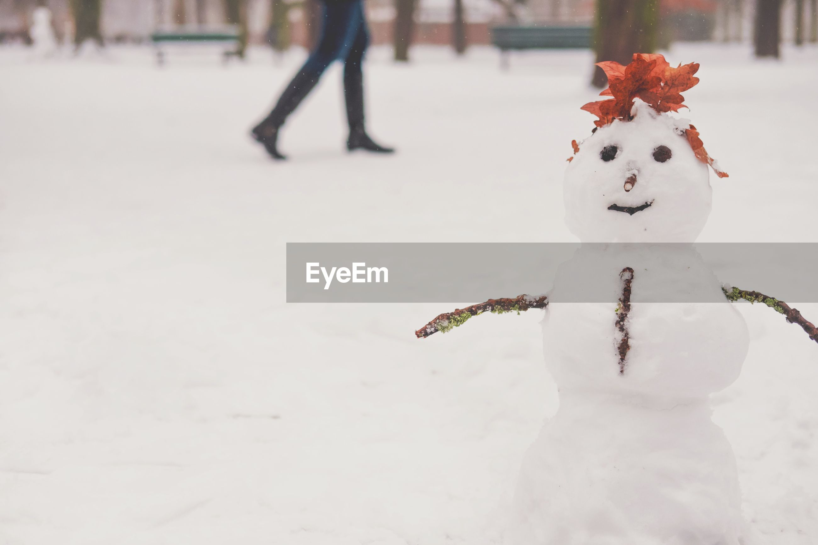 Snowman during winter