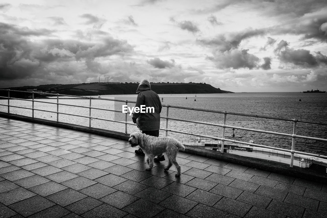 dog, pets, domestic animals, rear view, one animal, sky, mammal, walking, full length, railing, one person, cloud - sky, dog lead, outdoors, sea, real people, water, men, day, horizon over water, women, nature, architecture, people