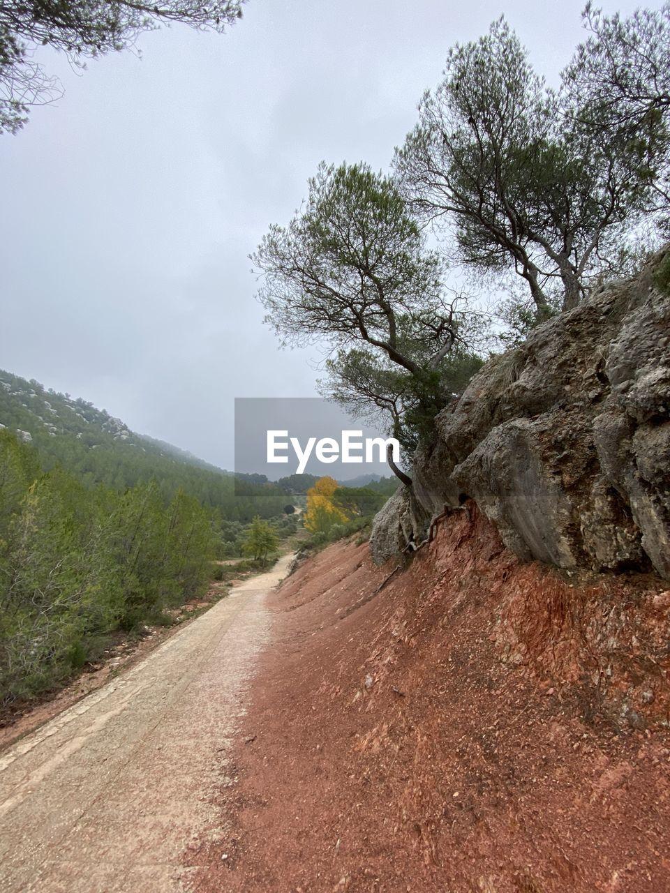 Dirt road by tree against sky