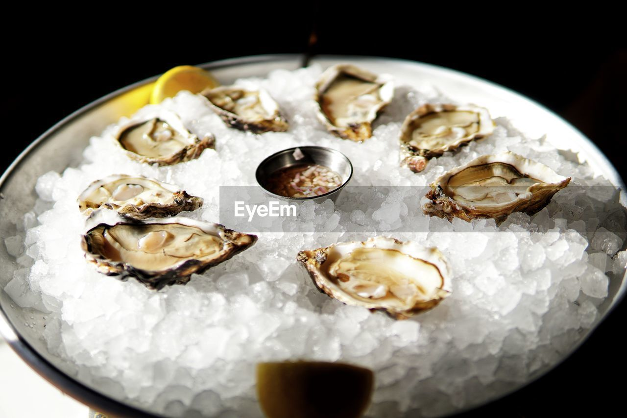 food and drink, food, freshness, seafood, still life, indoors, ready-to-eat, plate, oyster, close-up, wellbeing, no people, serving size, healthy eating, high angle view, shell, table, animal shell, ice, animal, black background, temptation