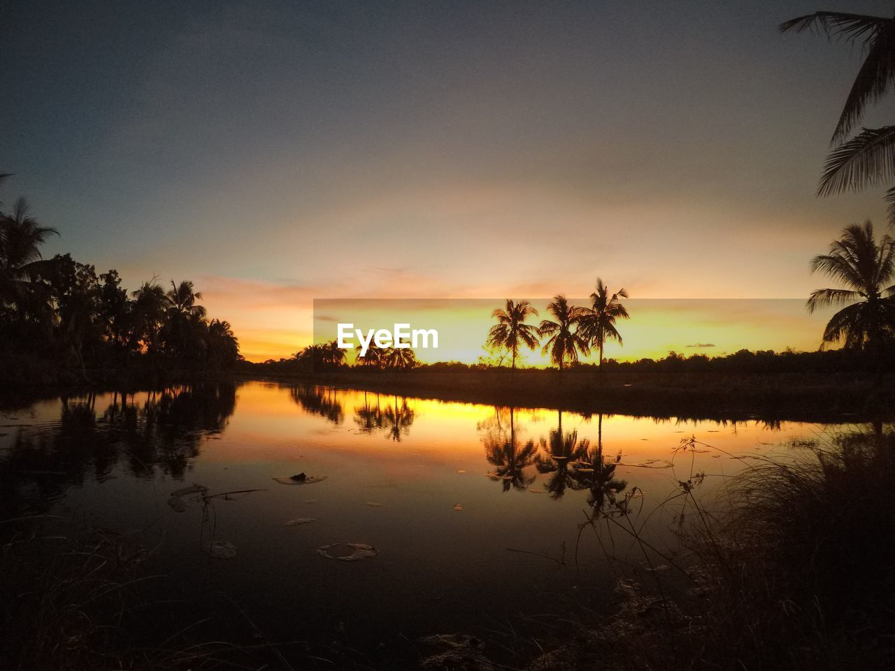 sky, sunset, water, tranquility, reflection, beauty in nature, tranquil scene, scenics - nature, tree, lake, plant, nature, orange color, no people, cloud - sky, idyllic, tropical climate, palm tree, silhouette, outdoors, coconut palm tree