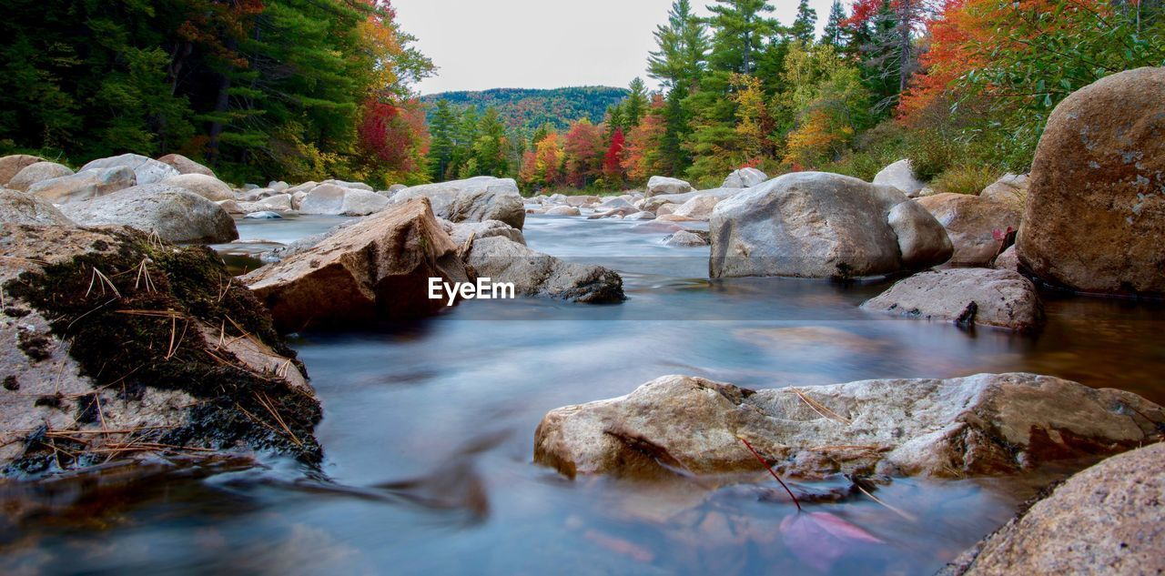 Close-up of rocks in river