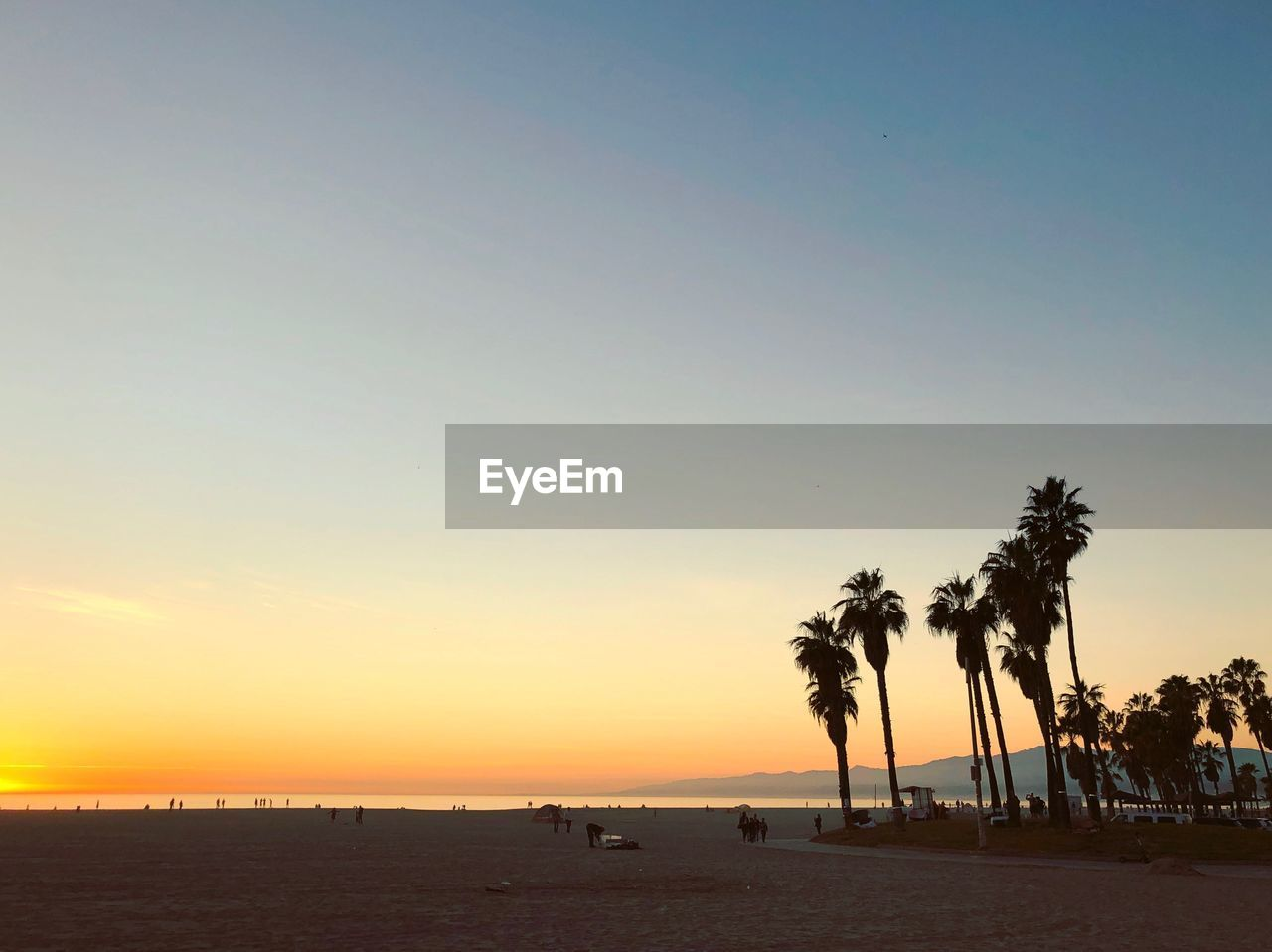 sunset, sky, tree, palm tree, tropical climate, scenics - nature, beauty in nature, water, land, plant, sea, beach, tranquility, tranquil scene, nature, silhouette, copy space, clear sky, orange color, outdoors, horizon over water, coconut palm tree