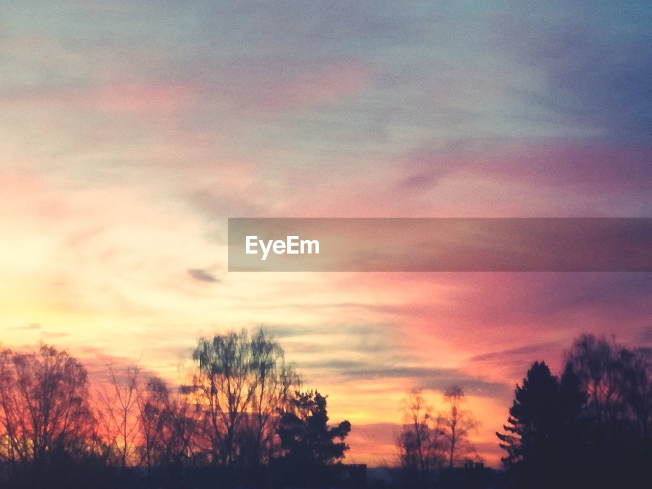 sky, cloud - sky, sunset, beauty in nature, scenics - nature, tranquility, tree, tranquil scene, orange color, silhouette, no people, plant, low angle view, nature, idyllic, outdoors, dramatic sky, non-urban scene, dusk, romantic sky