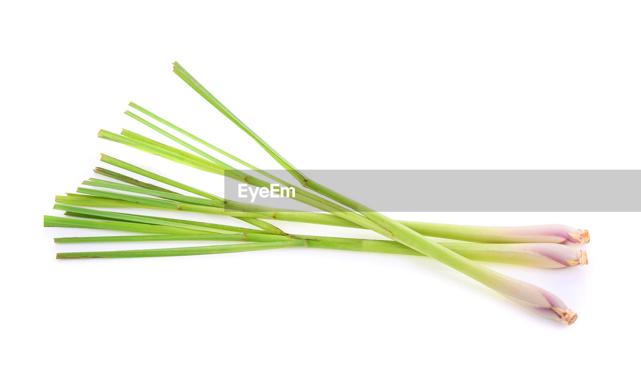 studio shot, white background, green color, indoors, freshness, close-up, cut out, plant, no people, still life, food and drink, copy space, plant part, nature, leaf, food, beauty in nature, wellbeing, growth