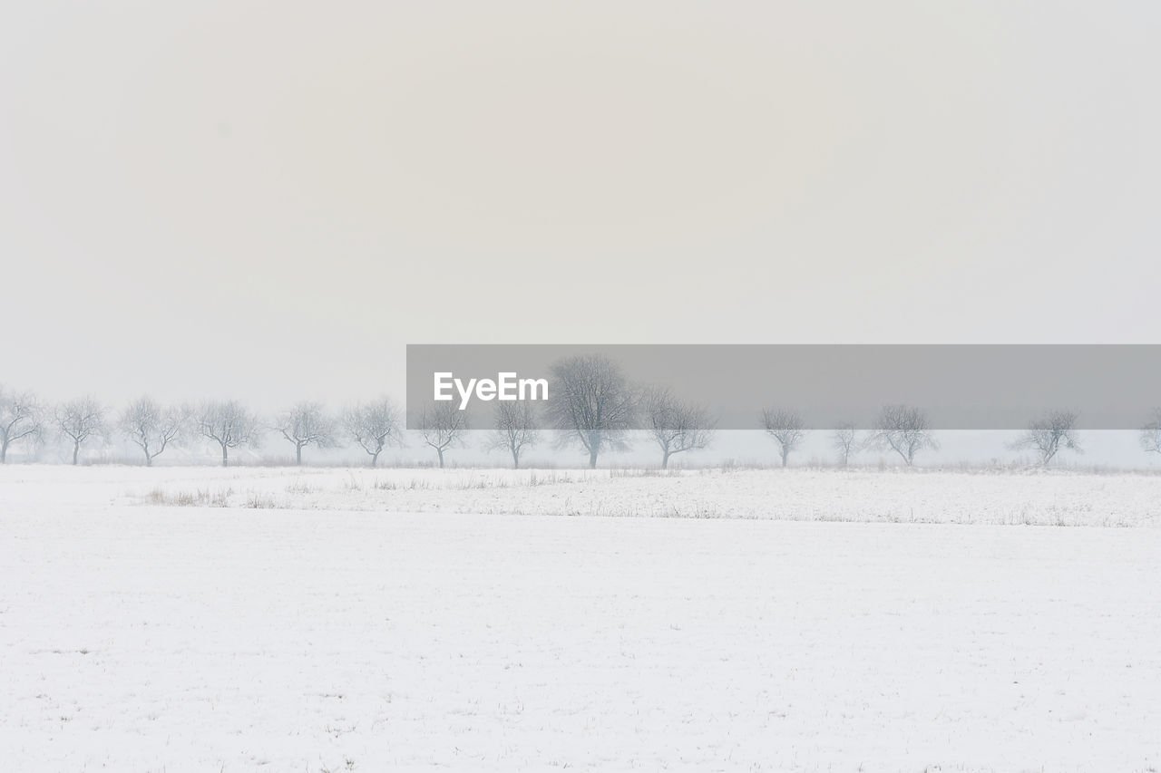 cold temperature, winter, snow, nature, white color, tranquility, tranquil scene, weather, beauty in nature, landscape, outdoors, scenics, copy space, clear sky, tree, frozen, bare tree, no people, day, sky