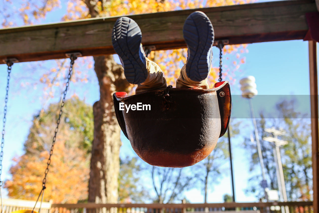 Low section of boy on swing against trees
