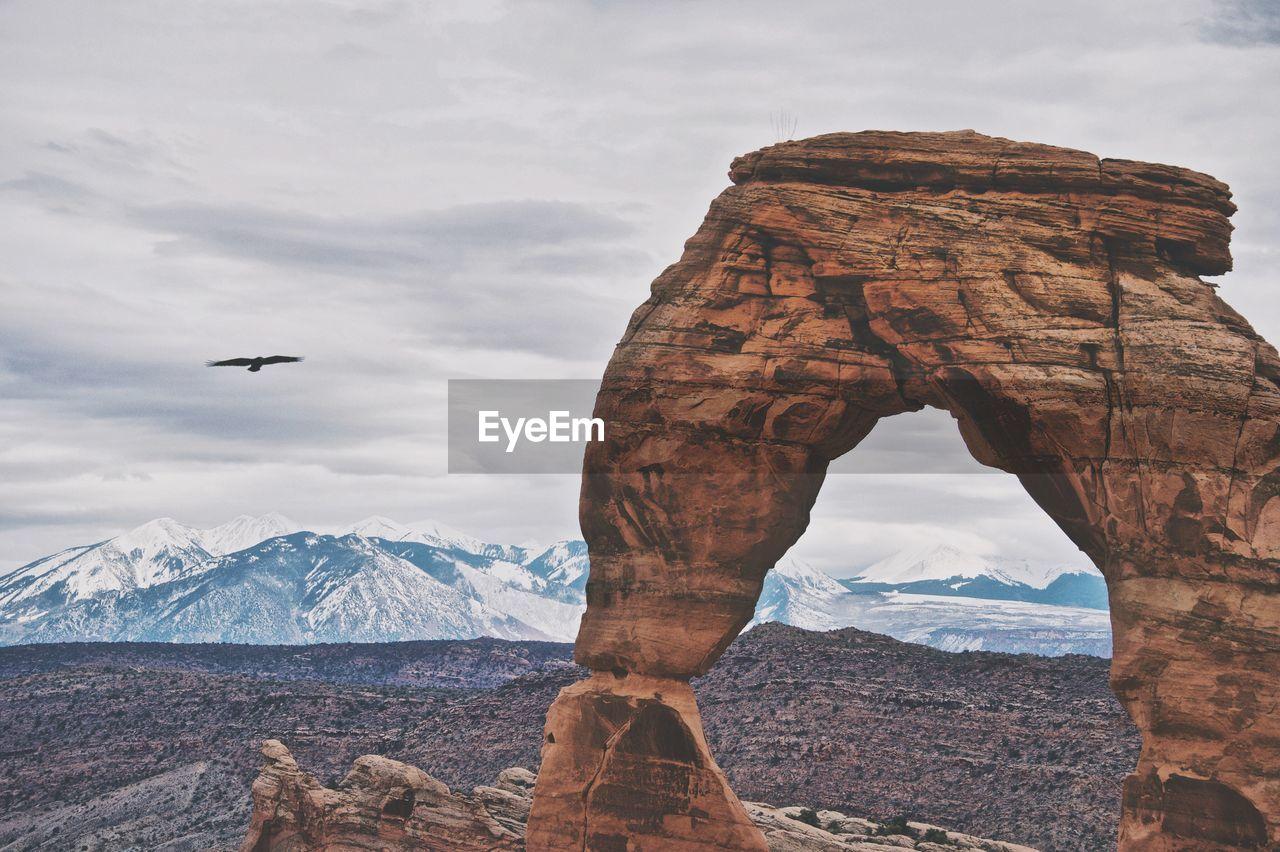 Bird Flying Over Mountain Against Sky