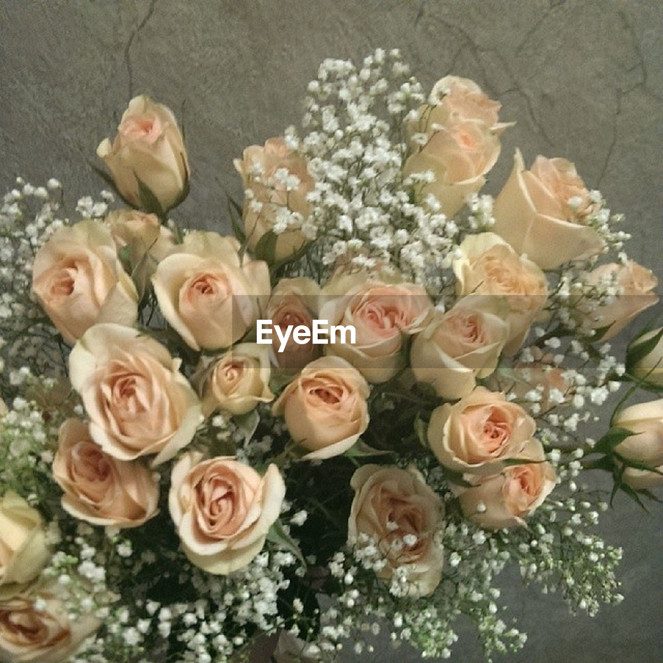flower, indoors, freshness, petal, bouquet, fragility, high angle view, flower head, rose - flower, vase, bunch of flowers, flower arrangement, variation, decoration, table, still life, close-up, plant, beauty in nature, nature
