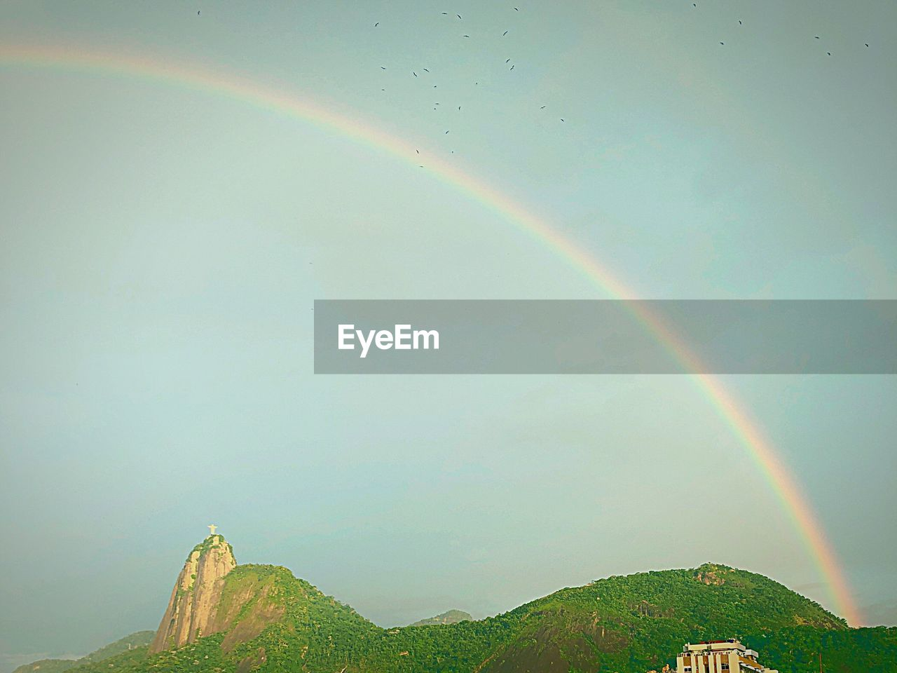 rainbow, beauty in nature, scenics - nature, tranquility, tranquil scene, nature, idyllic, no people, multi colored, sky, day, double rainbow, environment, mountain, non-urban scene, landscape, green color, plant, outdoors