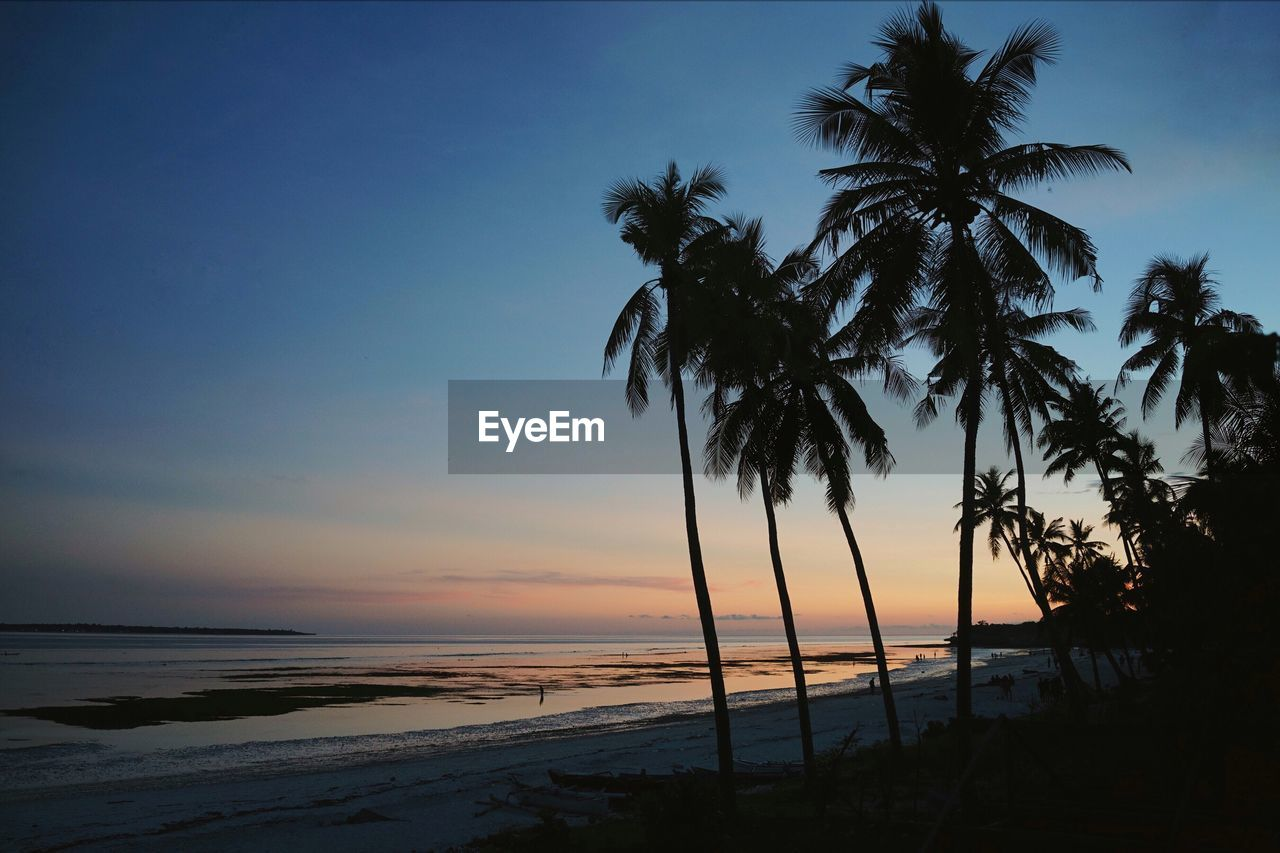 palm tree, sunset, scenics, beauty in nature, sea, nature, tranquility, tranquil scene, water, tree, beach, sky, idyllic, outdoors, horizon over water, silhouette, no people, tree trunk, travel destinations, day