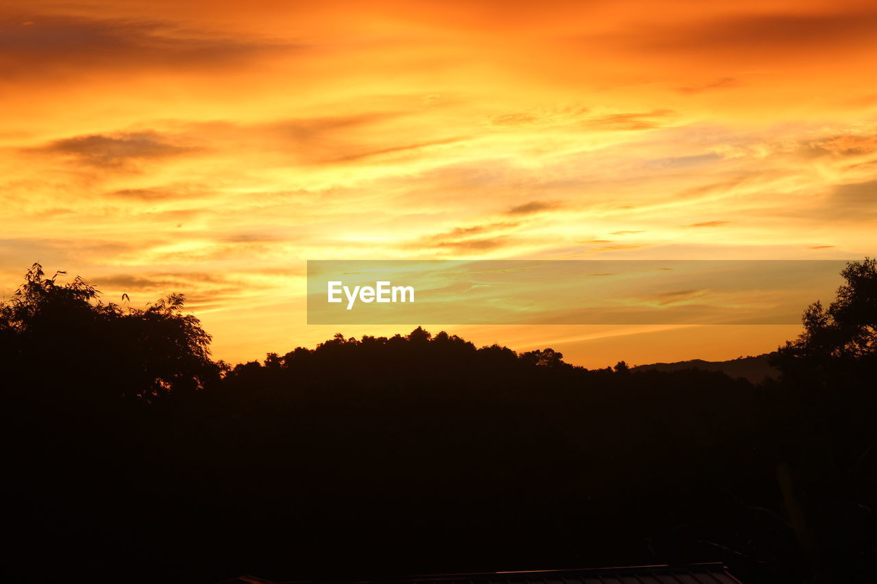sunset, silhouette, sky, scenics - nature, beauty in nature, orange color, tree, tranquil scene, tranquility, cloud - sky, nature, plant, no people, idyllic, non-urban scene, outdoors, dramatic sky, landscape, environment, growth, romantic sky