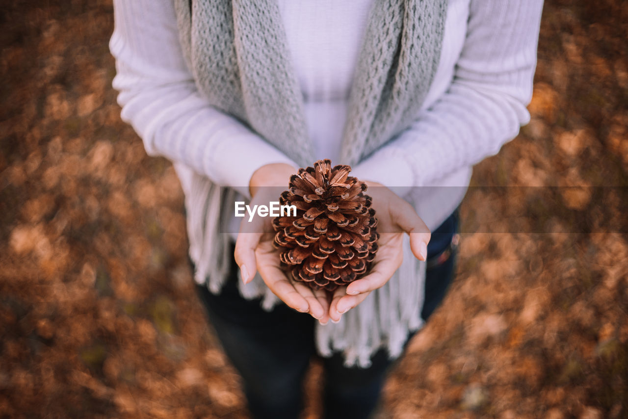 Midsection Of Woman Holding Pine Cone At Field