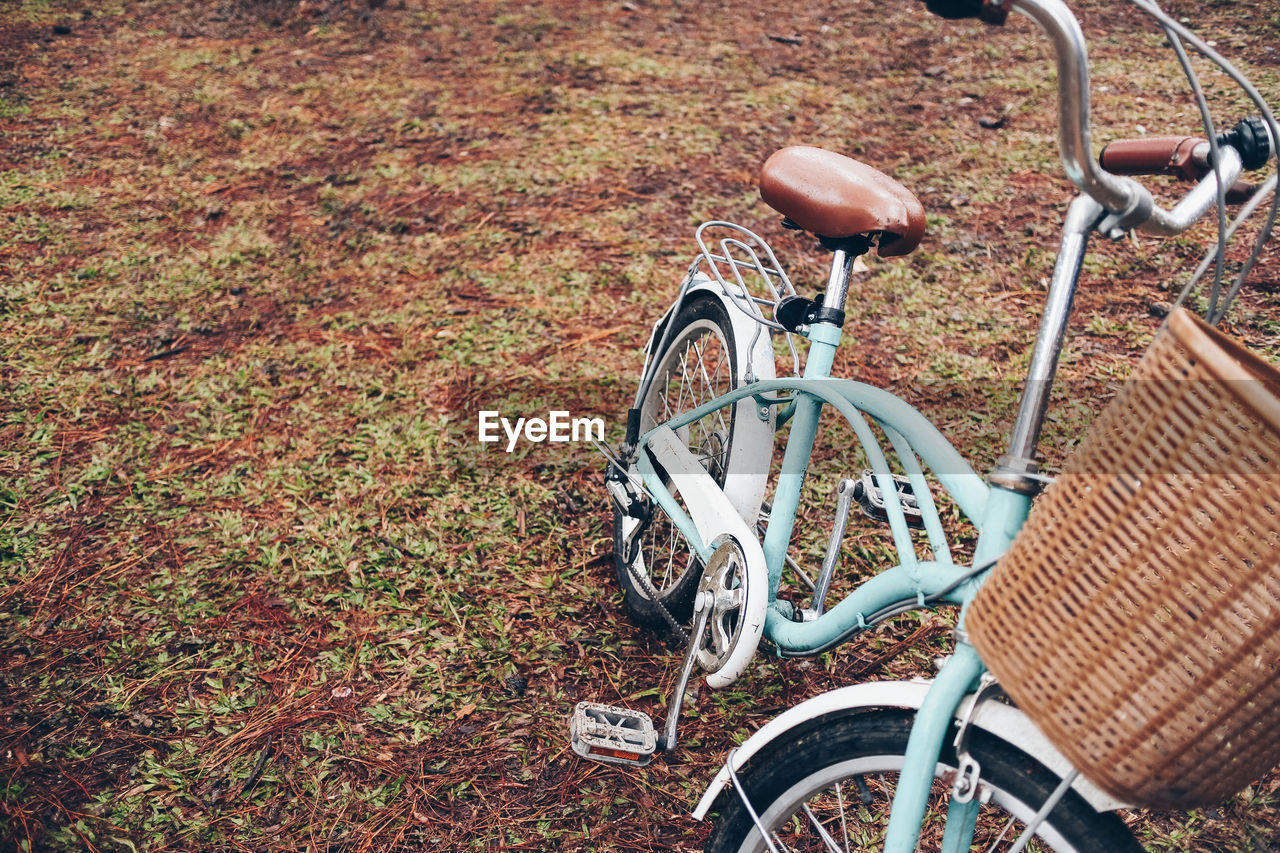 Bicycle Parked In Autumn