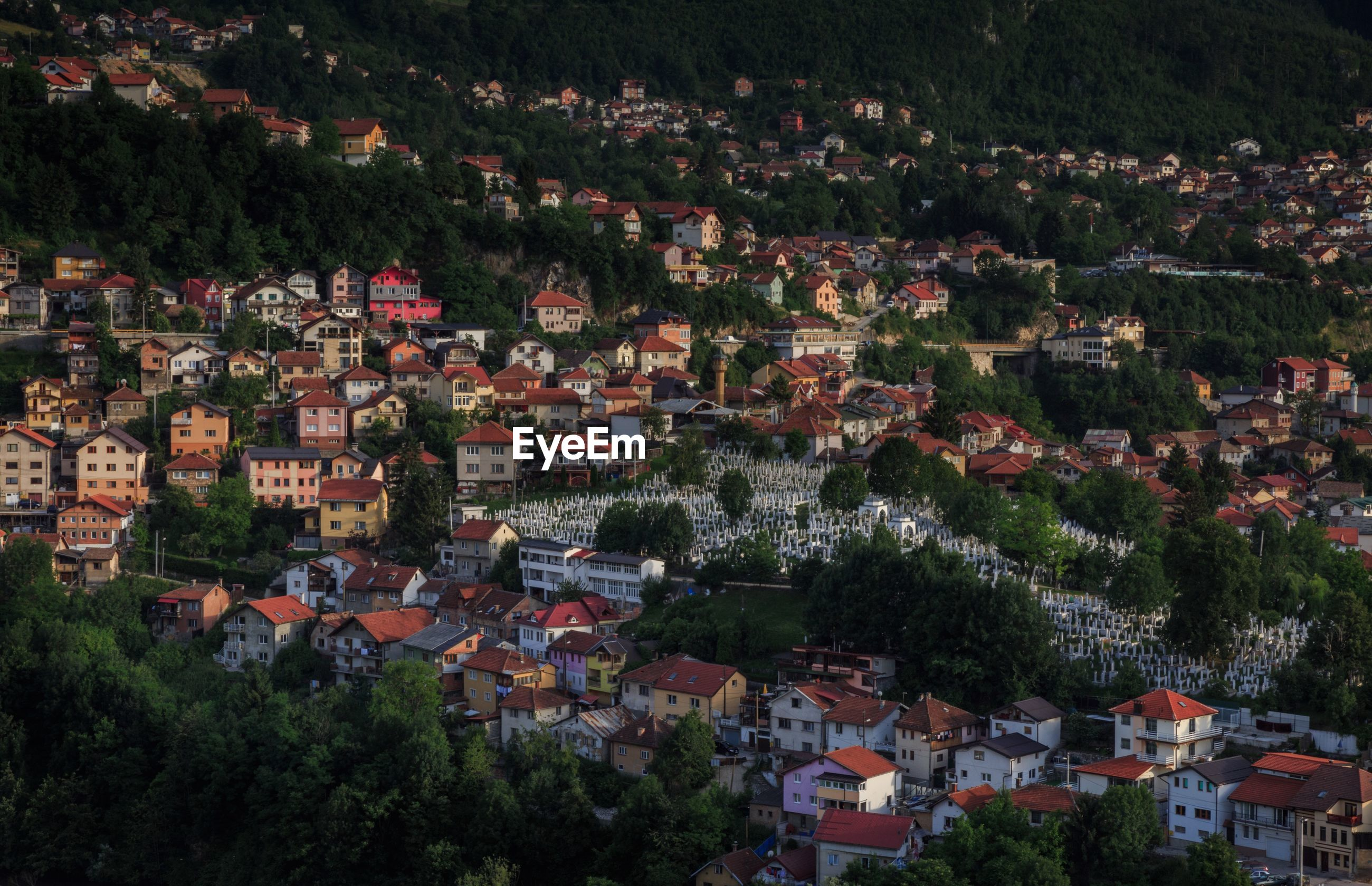 HIGH ANGLE VIEW OF HOUSES IN TOWN AGAINST TREES