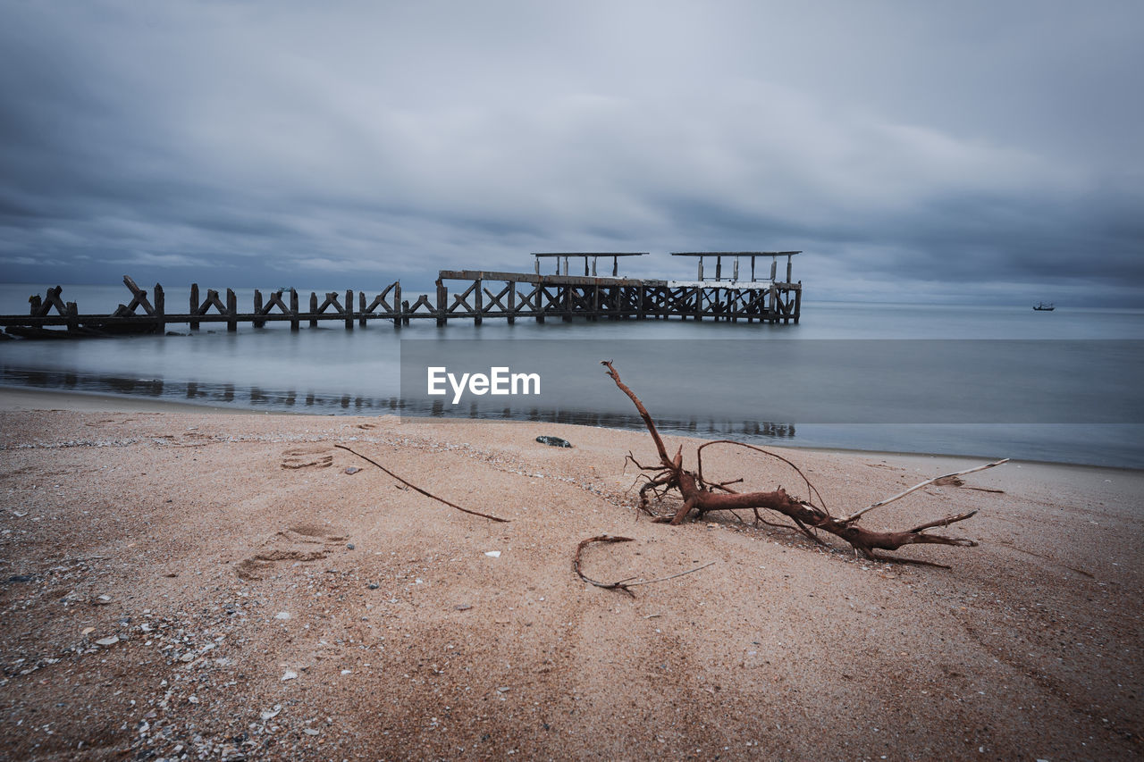 Driftwood on shore at beach against cloudy sky