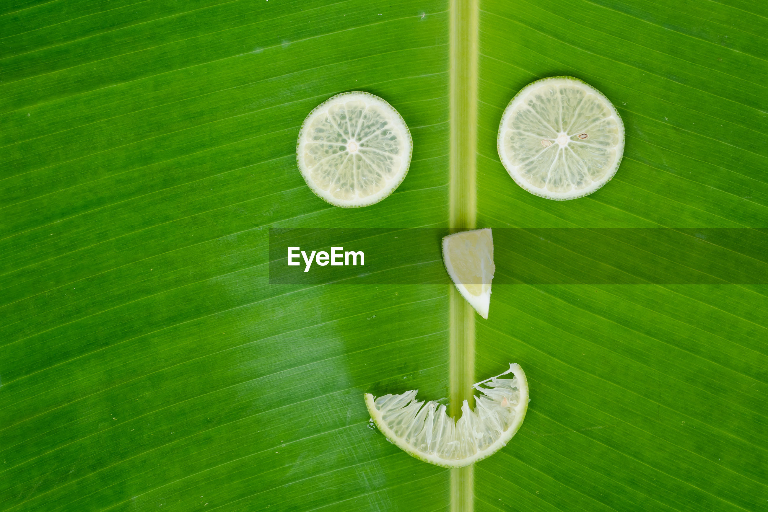 DIRECTLY ABOVE SHOT OF FRESH GREEN LEAVES WITH LEMON SLICE