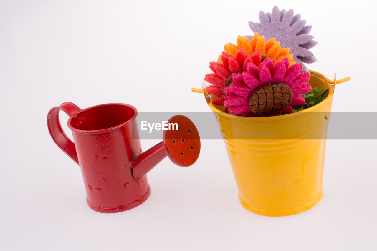 white background, flower, flowering plant, studio shot, indoors, still life, freshness, pink color, plant, close-up, no people, cup, red, potted plant, yellow, flower head, mug, vulnerability, refreshment, copy space, glass, purple, flower pot