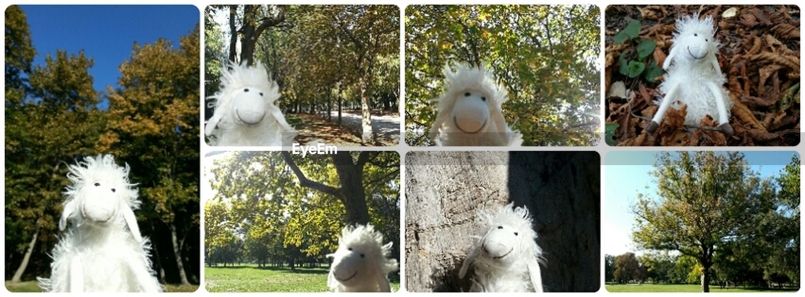 sculpture, statue, human representation, tree, white color, art and craft, art, animal representation, creativity, animal themes, park - man made space, day, bird, white, outdoors, no people, nature, close-up