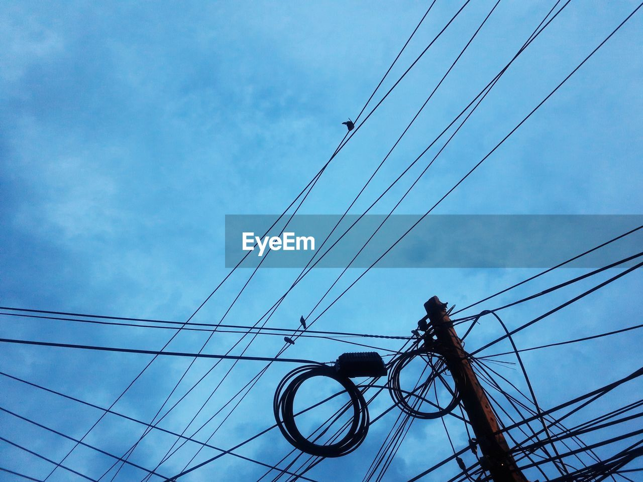 cable, power supply, connection, power line, low angle view, electricity, fuel and power generation, sky, technology, cloud - sky, electricity pylon, day, outdoors, complexity, no people, blue, telephone line