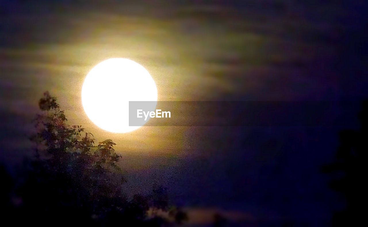 sun, beauty in nature, sunset, scenics, circle, nature, tranquil scene, tree, moon, low angle view, outdoors, sky, solar eclipse, sunlight, no people, yellow, tranquility, natural phenomenon, astronomy, close-up