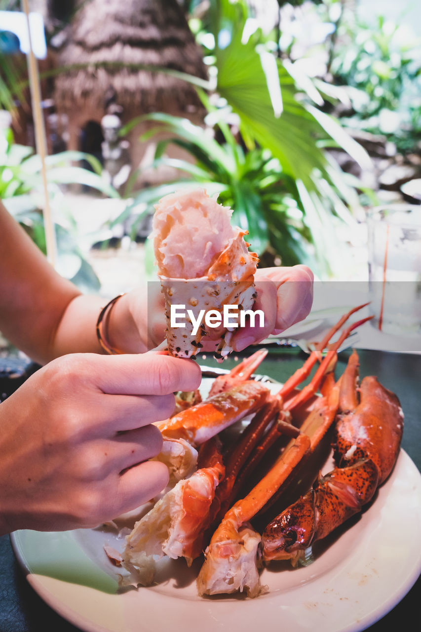 human hand, hand, food and drink, real people, one person, freshness, seafood, food, crustacean, human body part, holding, unrecognizable person, close-up, finger, human finger, healthy eating, lifestyles, wellbeing, meat, body part, lobster