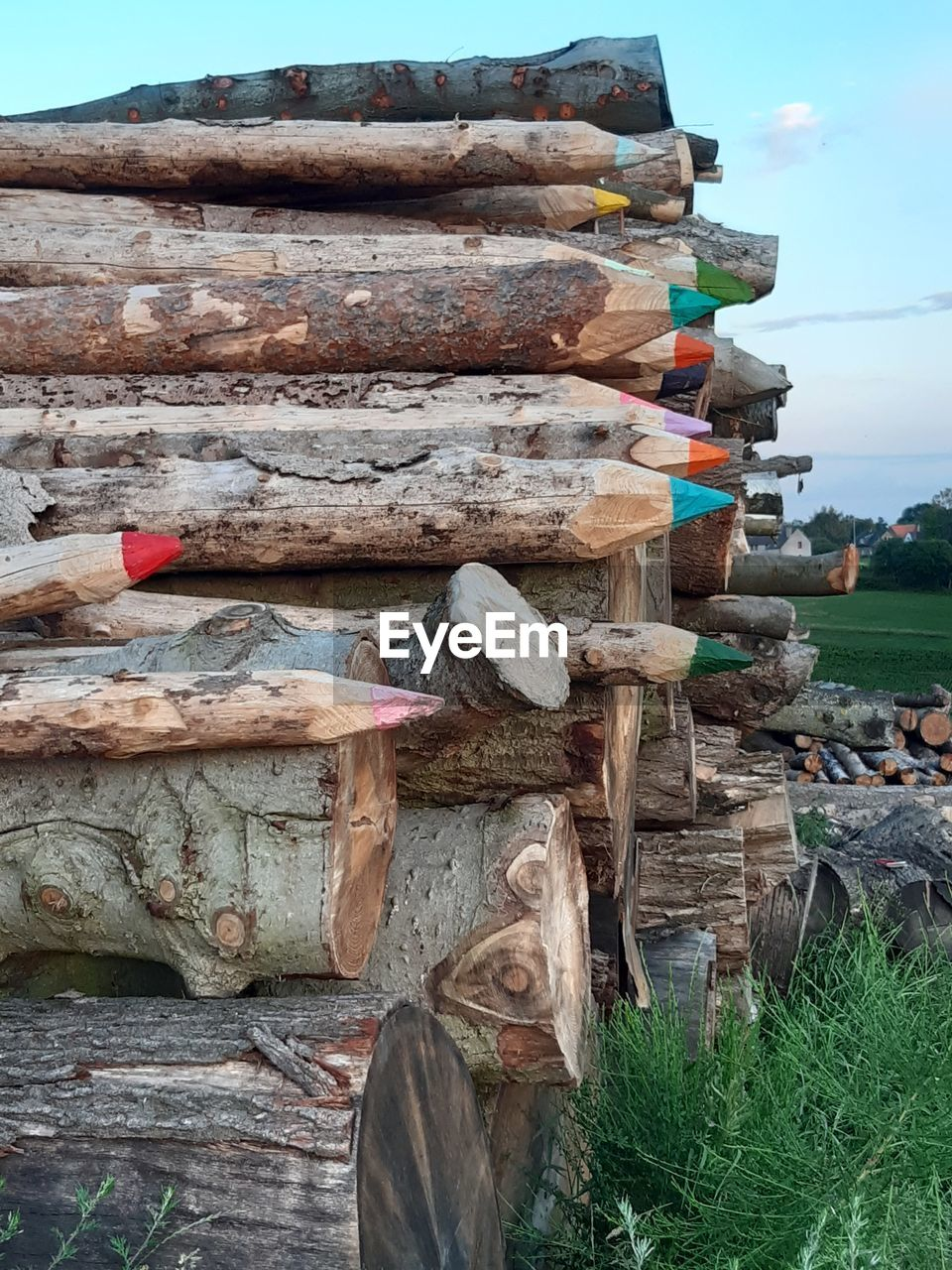 STACK OF LOGS ON WOOD