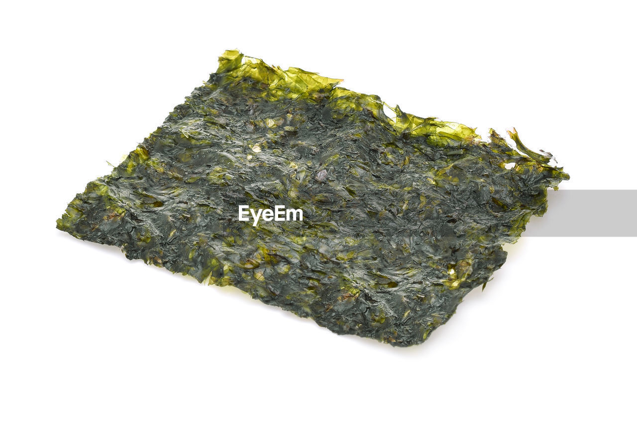 Close-up of dry seaweed over white background