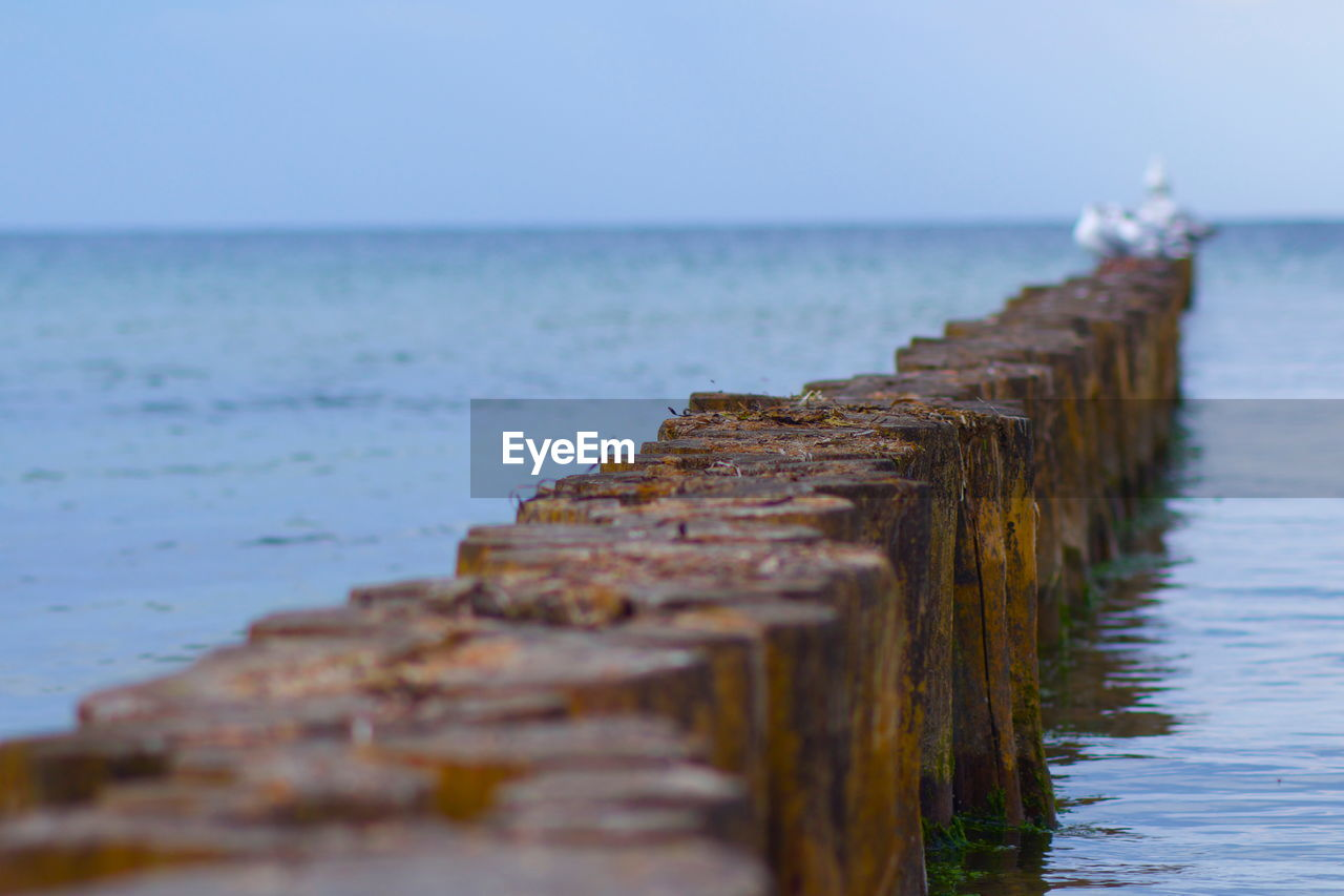 water, sea, horizon over water, horizon, sky, scenics - nature, beauty in nature, tranquil scene, selective focus, tranquility, no people, nature, wood - material, beach, land, day, idyllic, clear sky, direction, outdoors, wooden post
