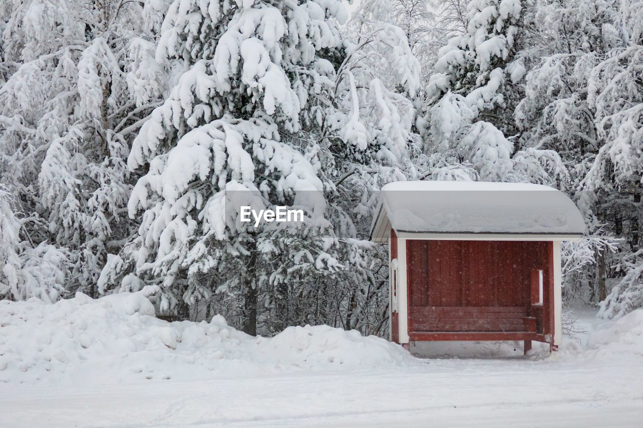 snow, cold temperature, winter, white color, covering, nature, no people, plant, tree, day, land, beauty in nature, frozen, field, snowing, extreme weather, architecture, tranquility, outdoors, cabin