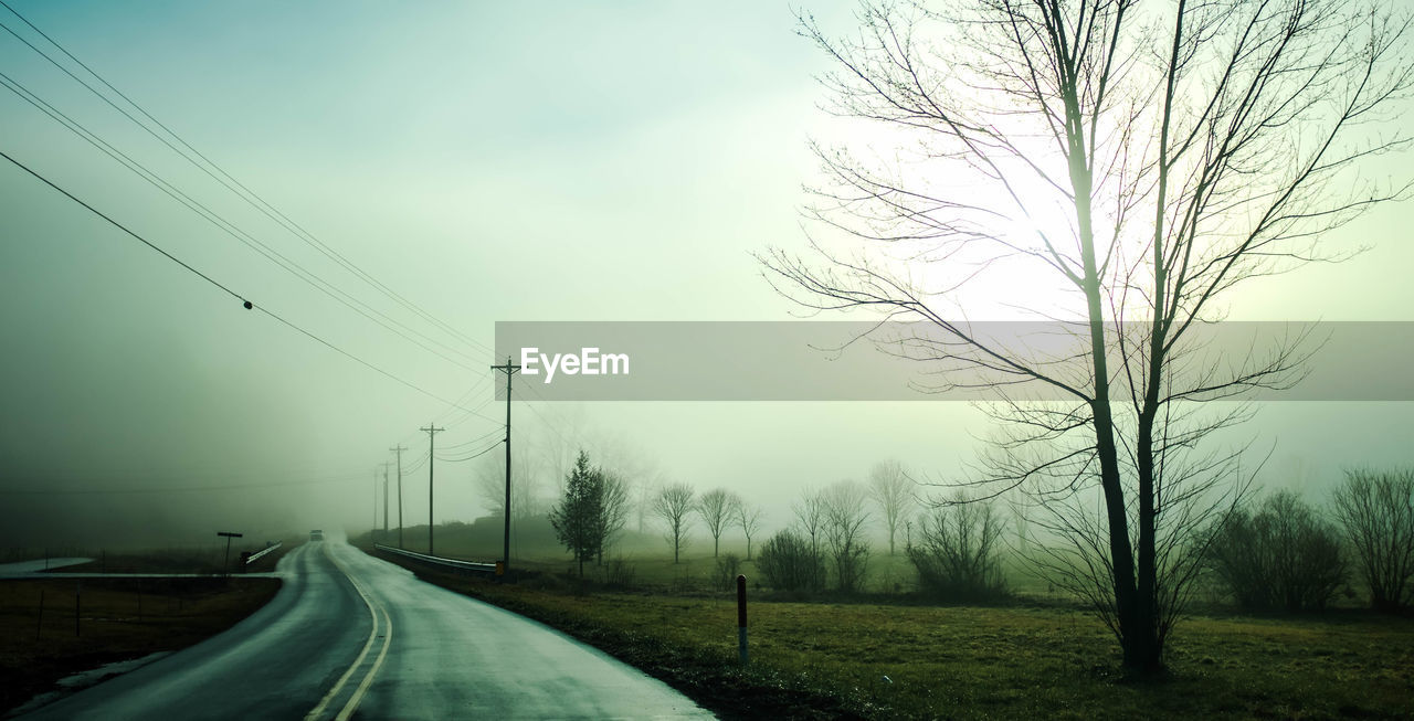 cable, electricity pylon, power line, road, landscape, fog, bare tree, nature, no people, tree, tranquil scene, tranquility, electricity, scenics, sky, power supply, the way forward, transportation, outdoors, day, beauty in nature, telephone line