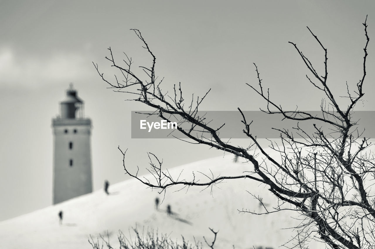 bare tree, lighthouse, guidance, architecture, building exterior, day, sky, outdoors, low angle view, no people, built structure, spirituality, place of worship, nature, branch, tree