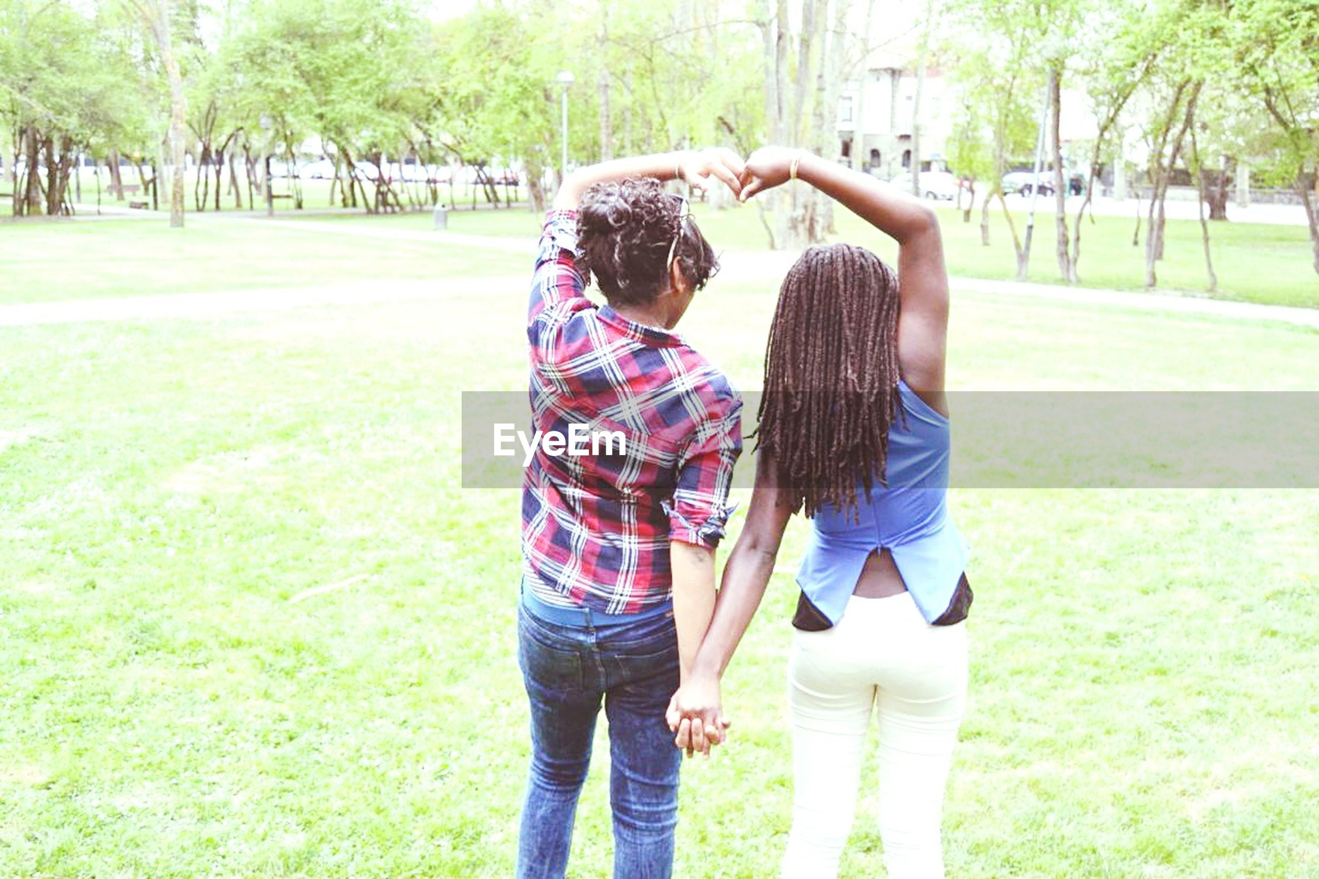 grass, lifestyles, leisure activity, casual clothing, tree, childhood, rear view, full length, standing, field, park - man made space, boys, girls, elementary age, person, grassy, three quarter length, playing