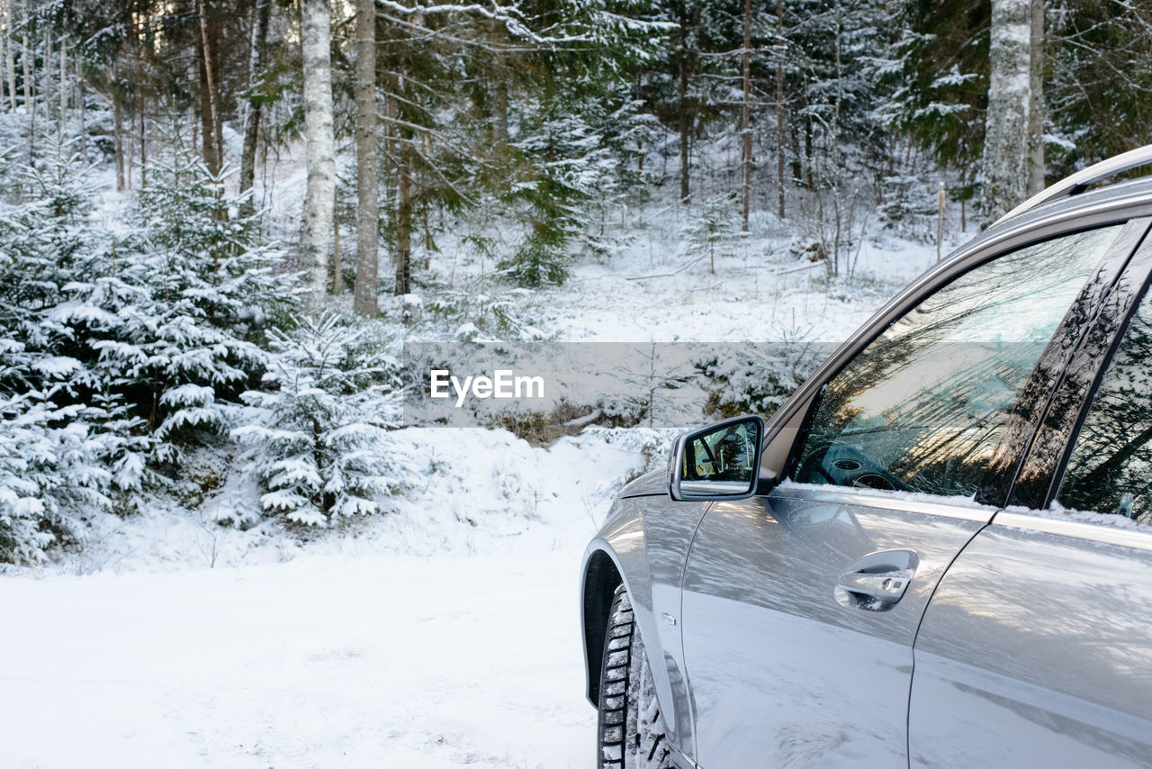 Close-Up Of Car On Snow Covered Tree