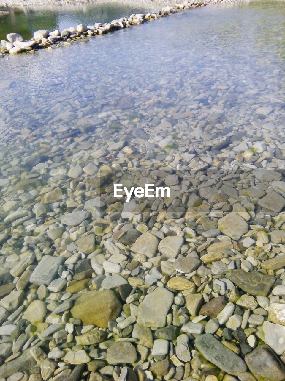 water, no people, day, nature, outdoors, pebble, beauty in nature, close-up, animal themes