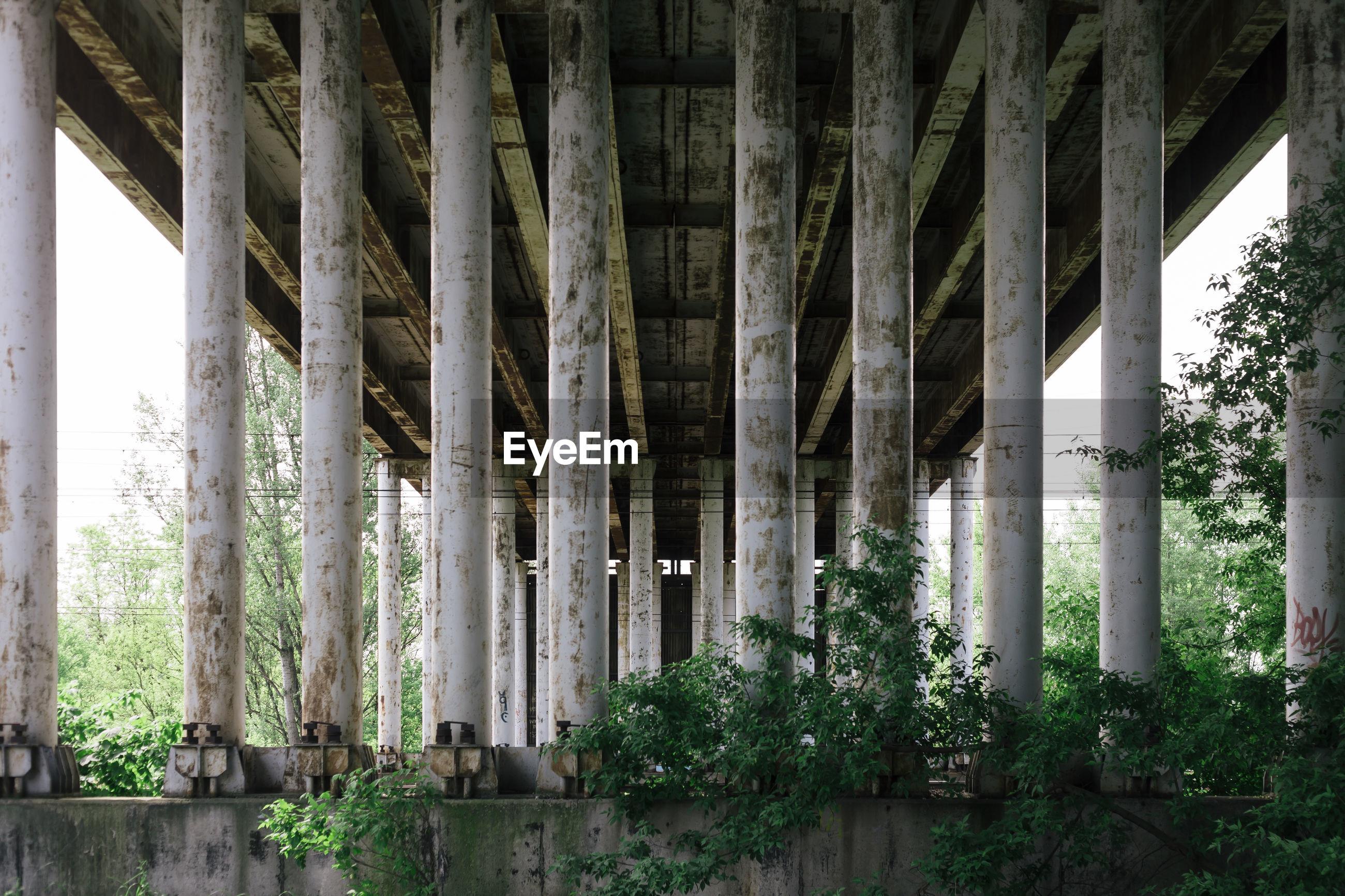 Columns below old bridge
