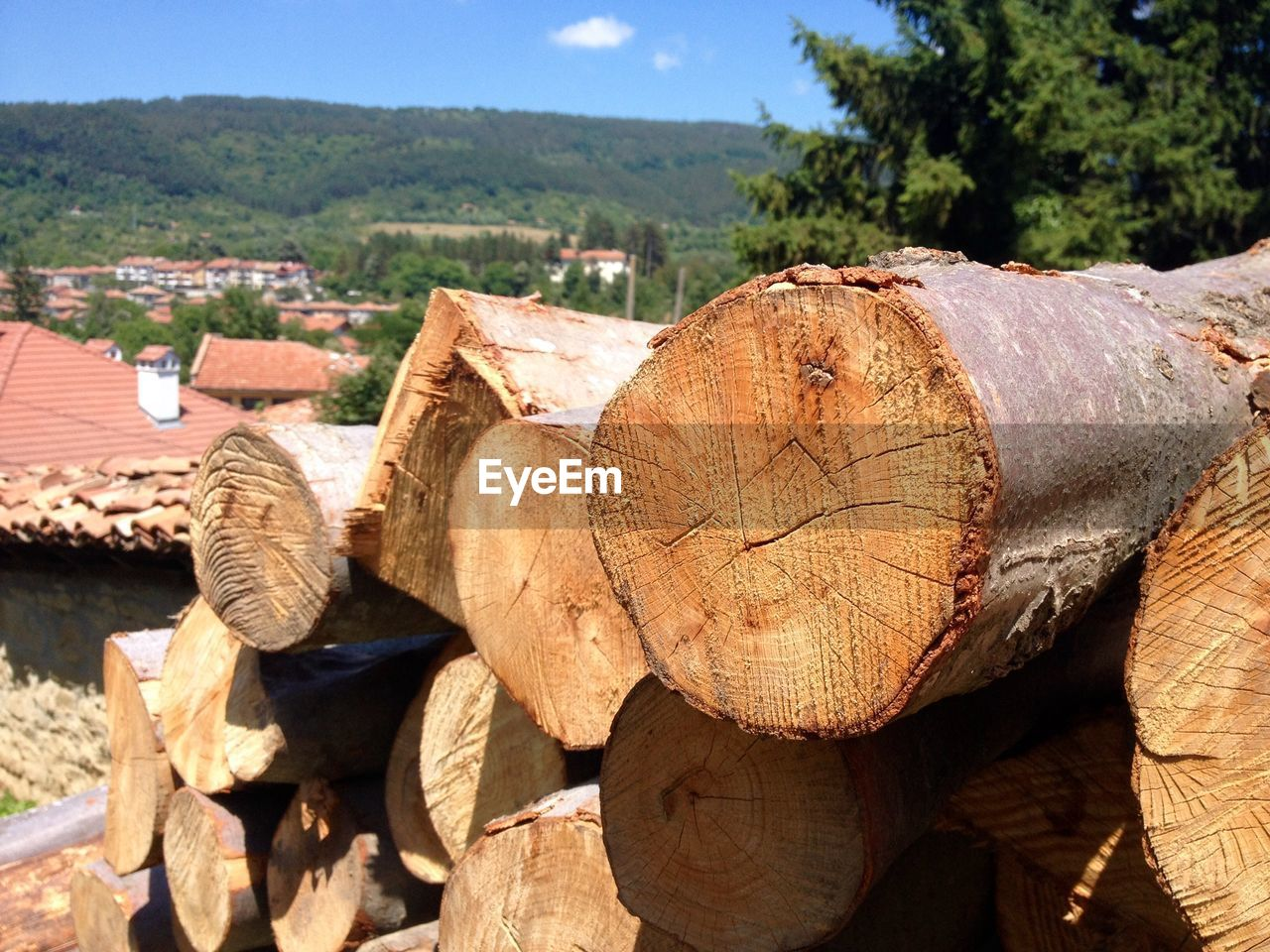 log, deforestation, stack, timber, lumber industry, no people, outdoors, day, nature, woodpile, wood - material, tree, landscape, forestry industry, close-up