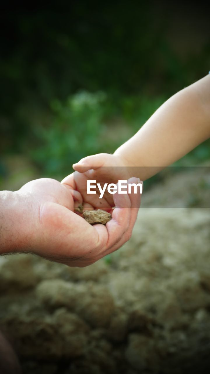 human hand, human body part, holding, two people, real people, focus on foreground, togetherness, outdoors, day, close-up, childhood, friendship, nature, people