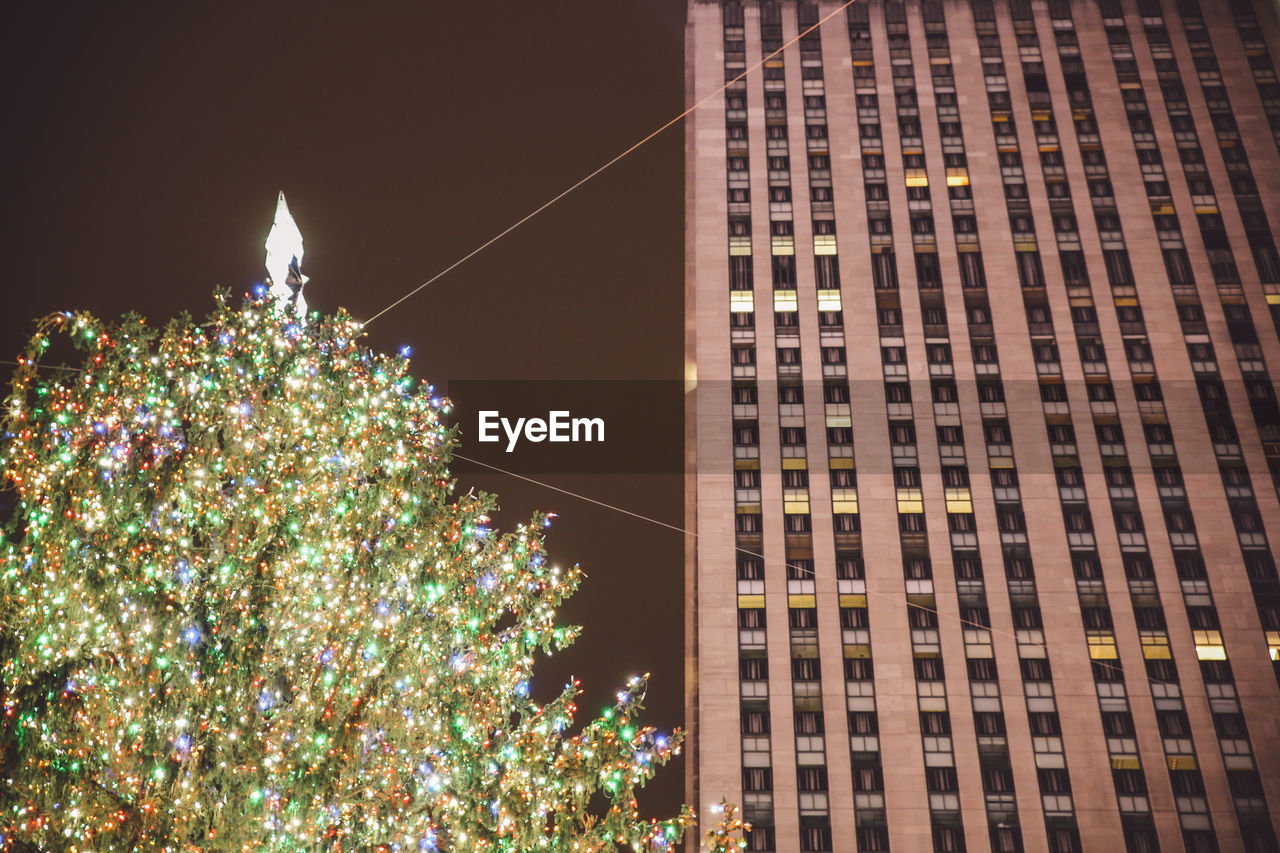 christmas, christmas tree, celebration, christmas decoration, illuminated, low angle view, tree, night, christmas lights, building exterior, no people, architecture, built structure, outdoors, clear sky, sky