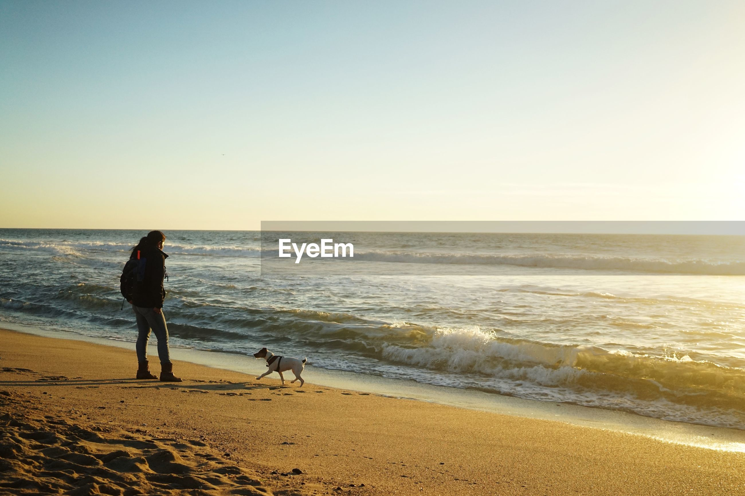 Woman with dog at shore against clear sky