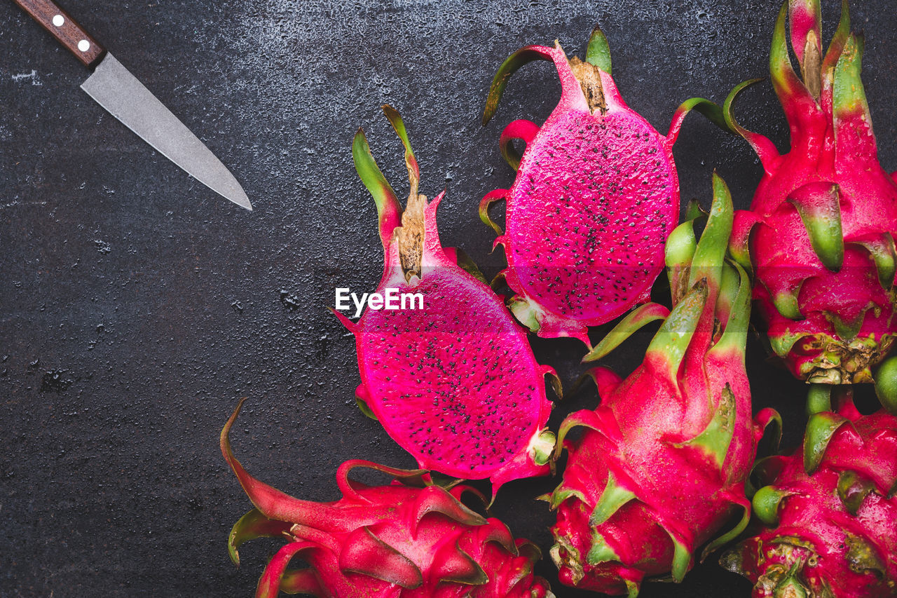 HIGH ANGLE VIEW OF PINK ROSE ON PLANT