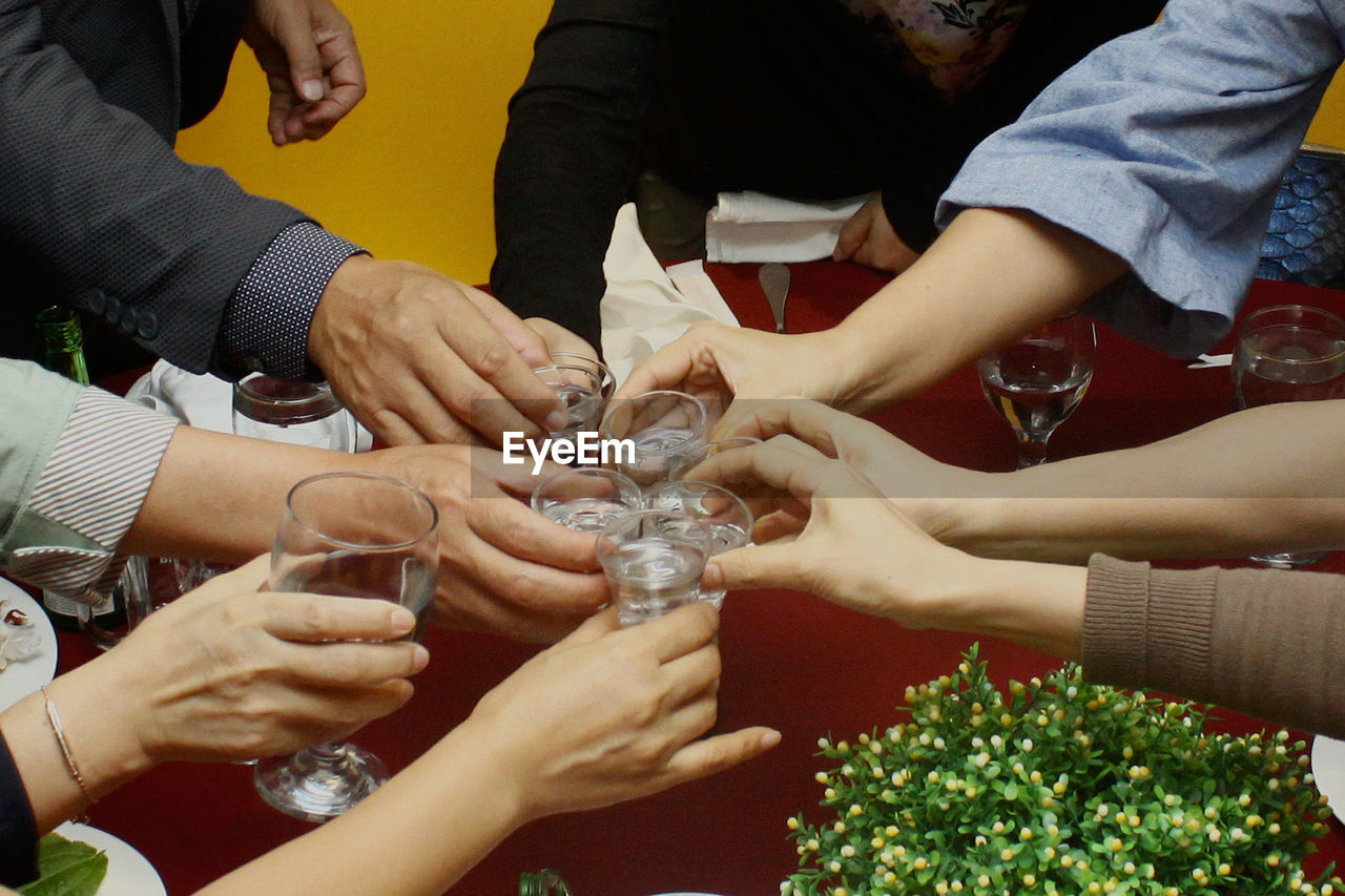 Cropped Image Of Friends Toasting At Table
