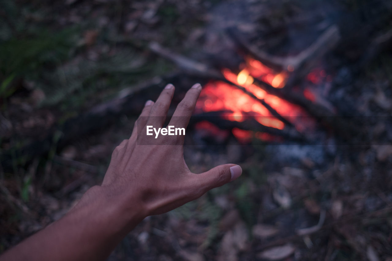 Cropped Image Of Hand Over Campfire