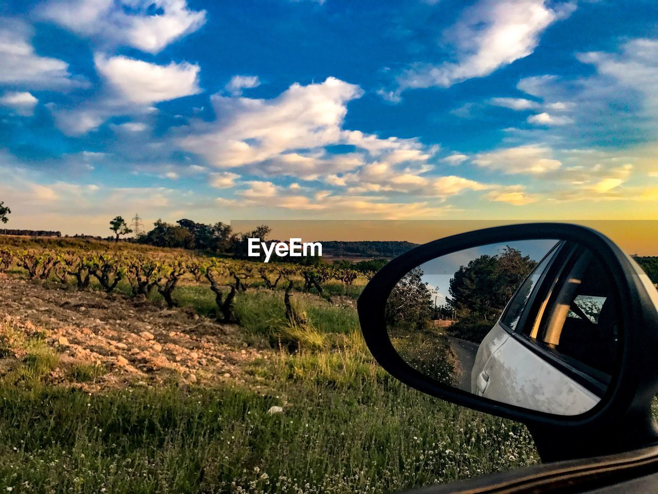 landscape, sky, field, side-view mirror, transportation, car, cloud - sky, nature, grass, beauty in nature, land vehicle, scenics, outdoors, no people, day, tree