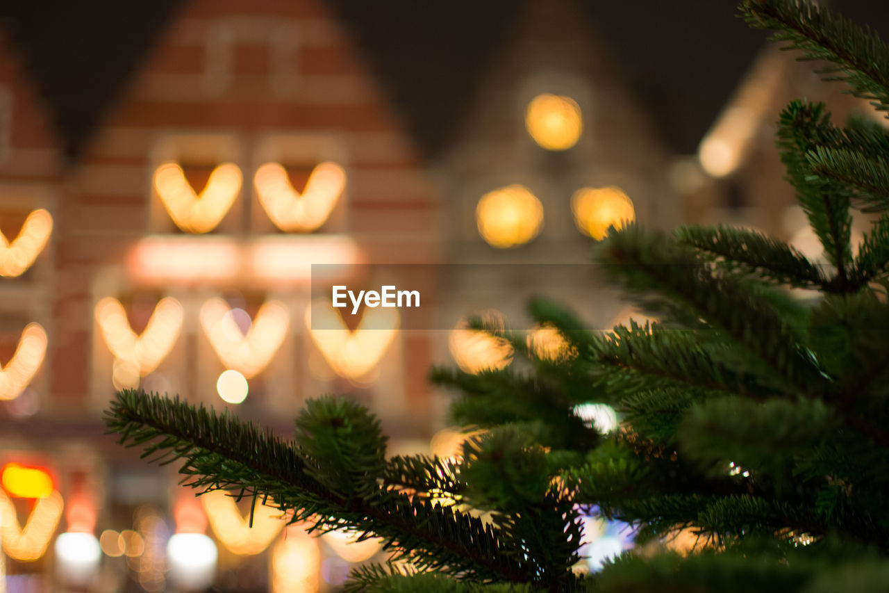 Close-up of christmas tree against illuminated lighting equipment at night