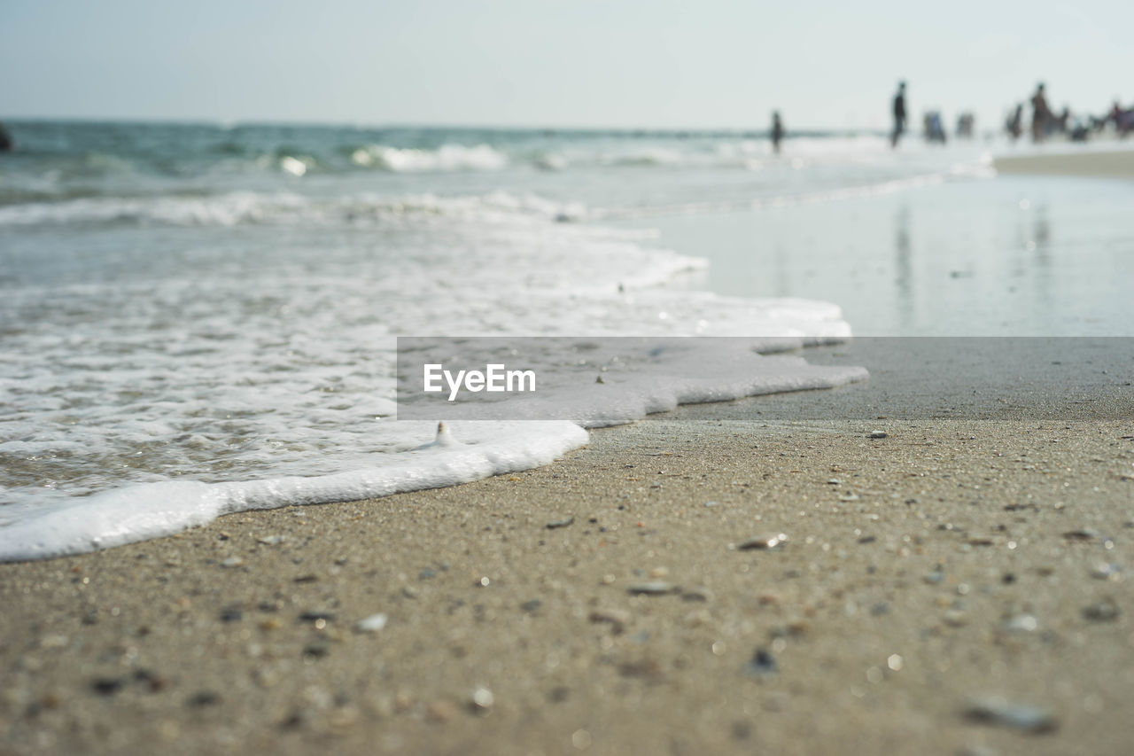 beach, sea, land, water, sand, sport, aquatic sport, day, wave, motion, surfing, nature, horizon over water, horizon, beauty in nature, selective focus, sky, outdoors, surface level